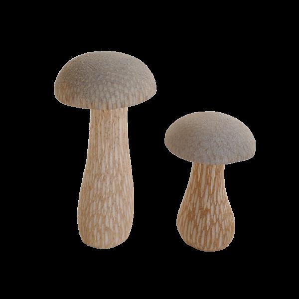 Pilze-grau